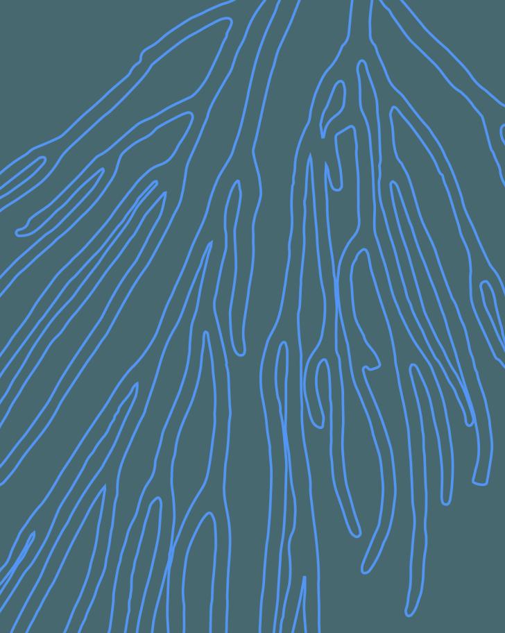 Exploraciones gráficas para identidad visual del Santuario y la Fundación →